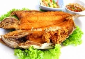 ปลาสำลีทอดกรอบยำมะม่วง